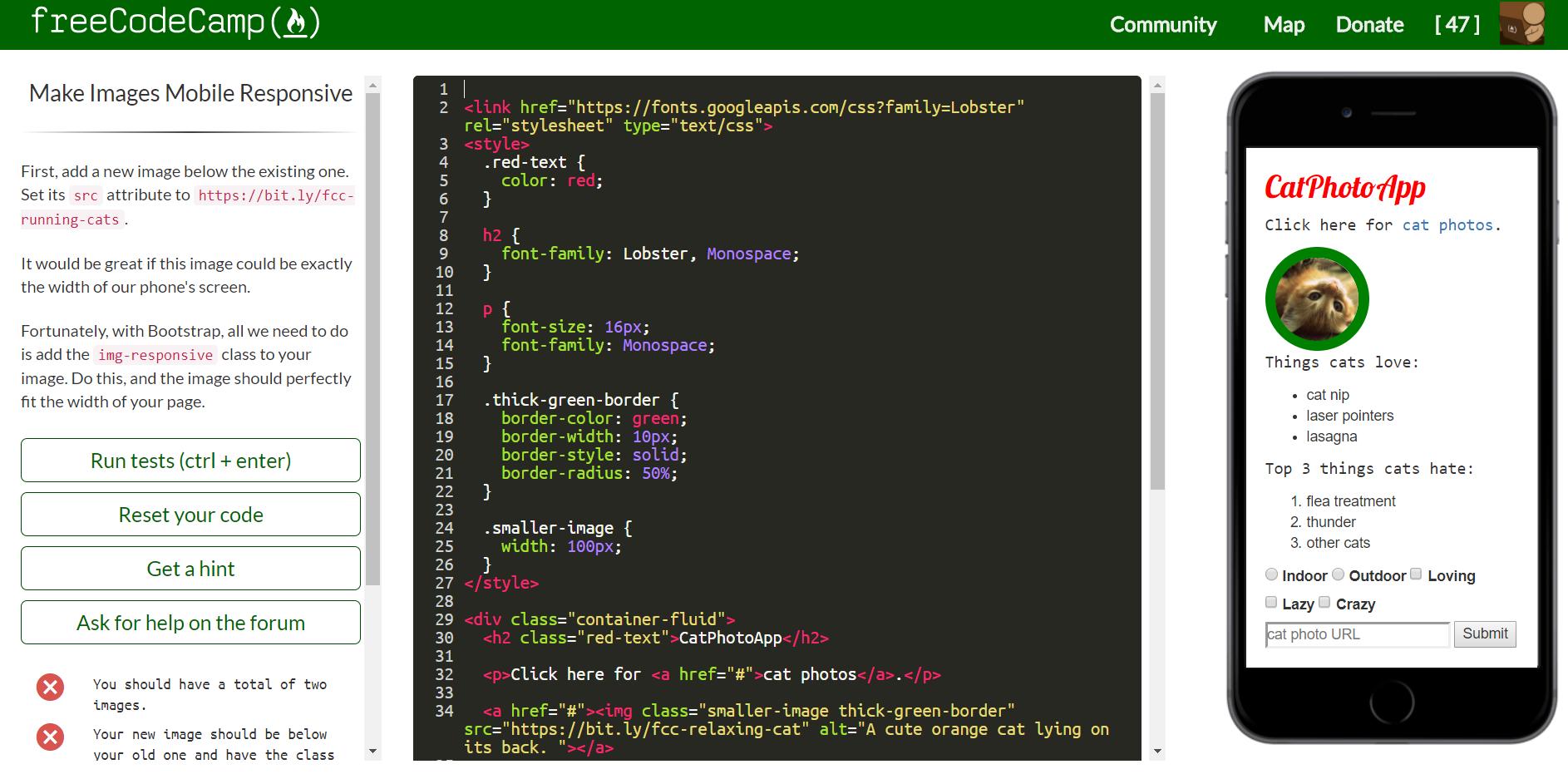 freeCodeCamp | HollyPryce.com