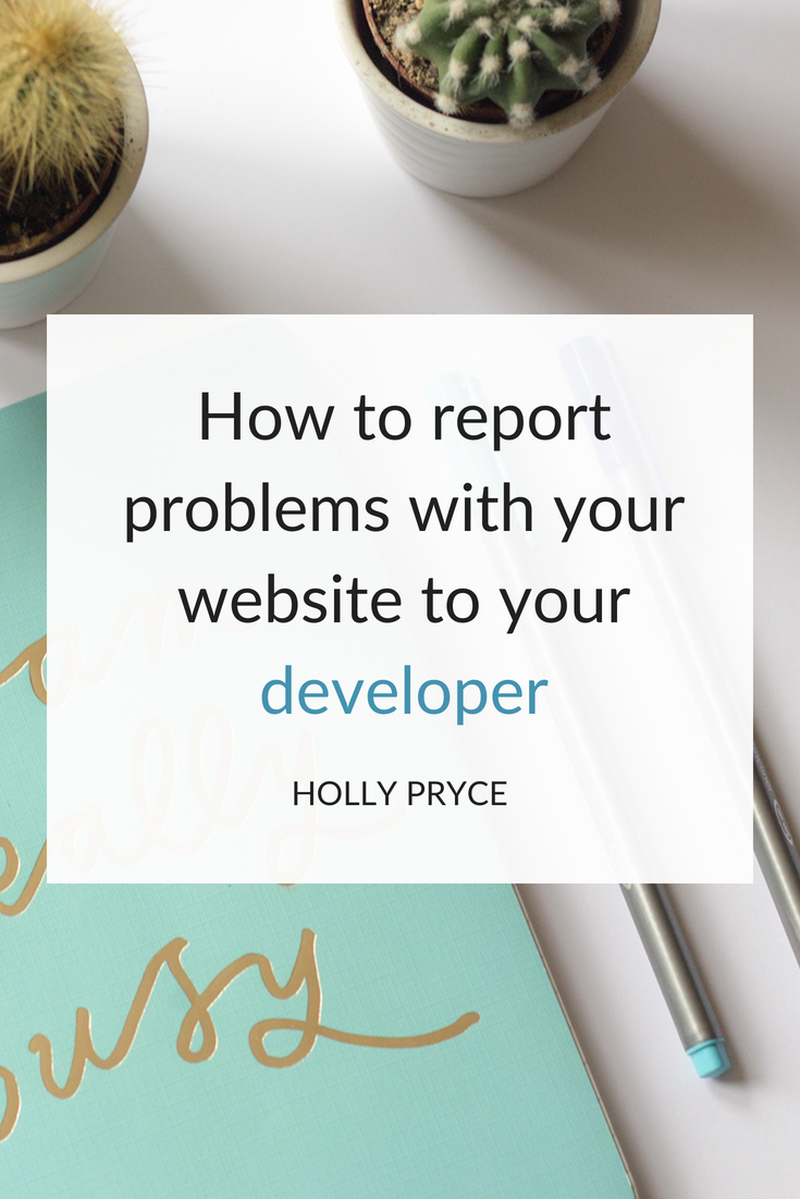 How to report problems with your website to your developer | HollyPryce.com