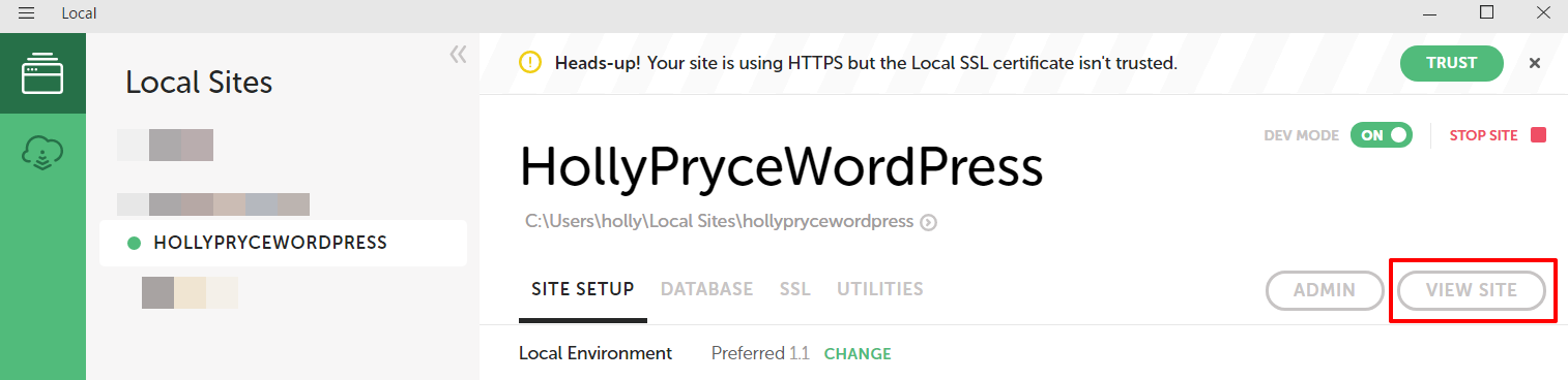 View WordPress website in Local by Flywheel | HollyPryce.com